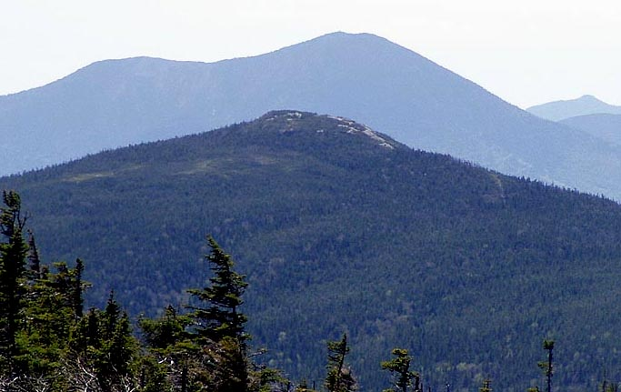 how tall is mt jackson